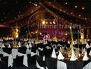 Birthday Styled Marquees