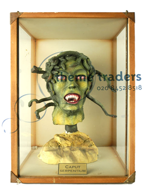 Medusa Heads in Display Case Props, Prop Hire