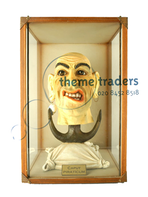 Sailor Head in Display Case Props, Prop Hire